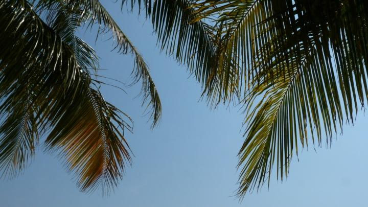 Escapade dans les îles du sud de laThaïlande